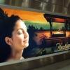 Bannere publicitare de exterior backlit