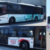 personalizare_autobuz_autocolant_petunia_2015