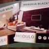 poster_modulo