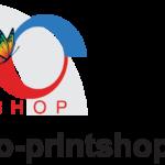 logo-pro-print