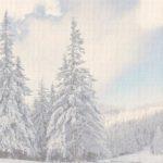 bg-site-iarna